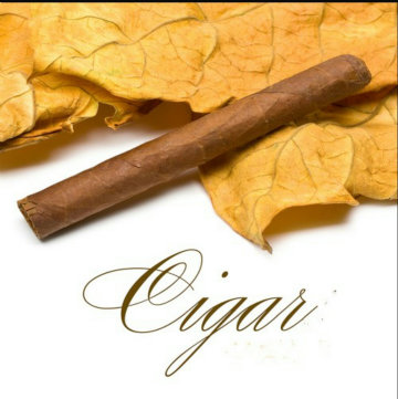 Cigar E-Liquids Box Set 10 x 10ML